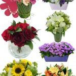 Flores em todos os momentos com Flores Online