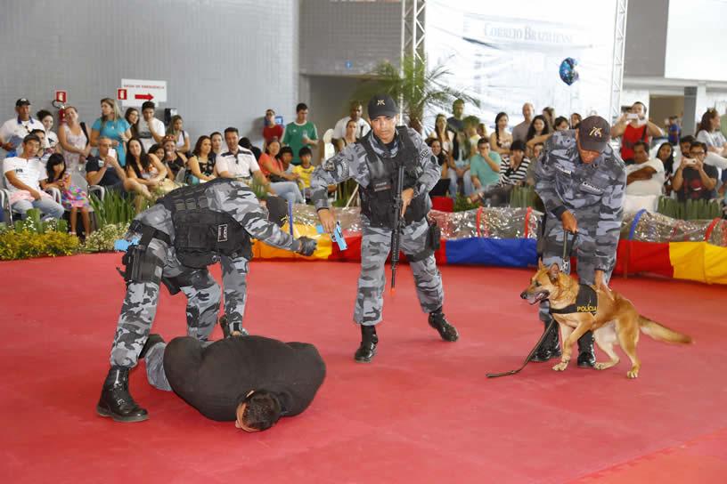 brasiliapetshow2