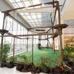 Taguatinga Shopping recebe circuito de Arvorismo Indoor